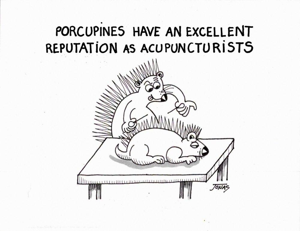 Cartoon Acupuncturists