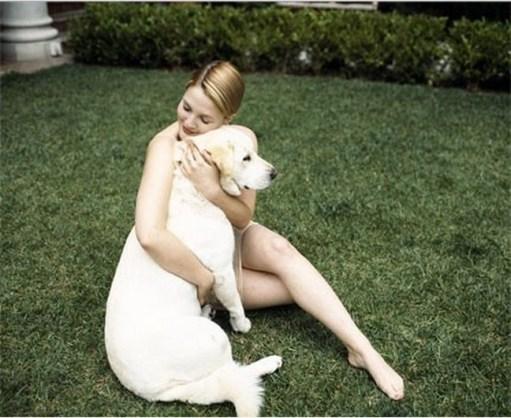 Drew-Barrymore-labrador